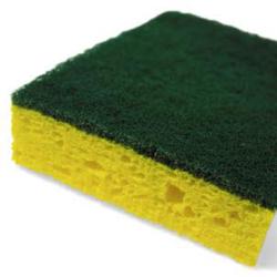 Scotchbrite Sponge